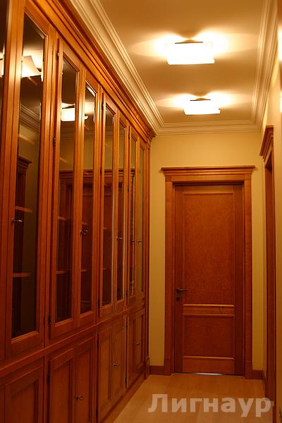 Дверь и встроенные шкафы медового